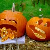 Halloween Pumpkins Carving Ideas