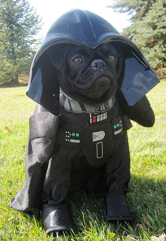 Halloween Costumes: Darth-Vader