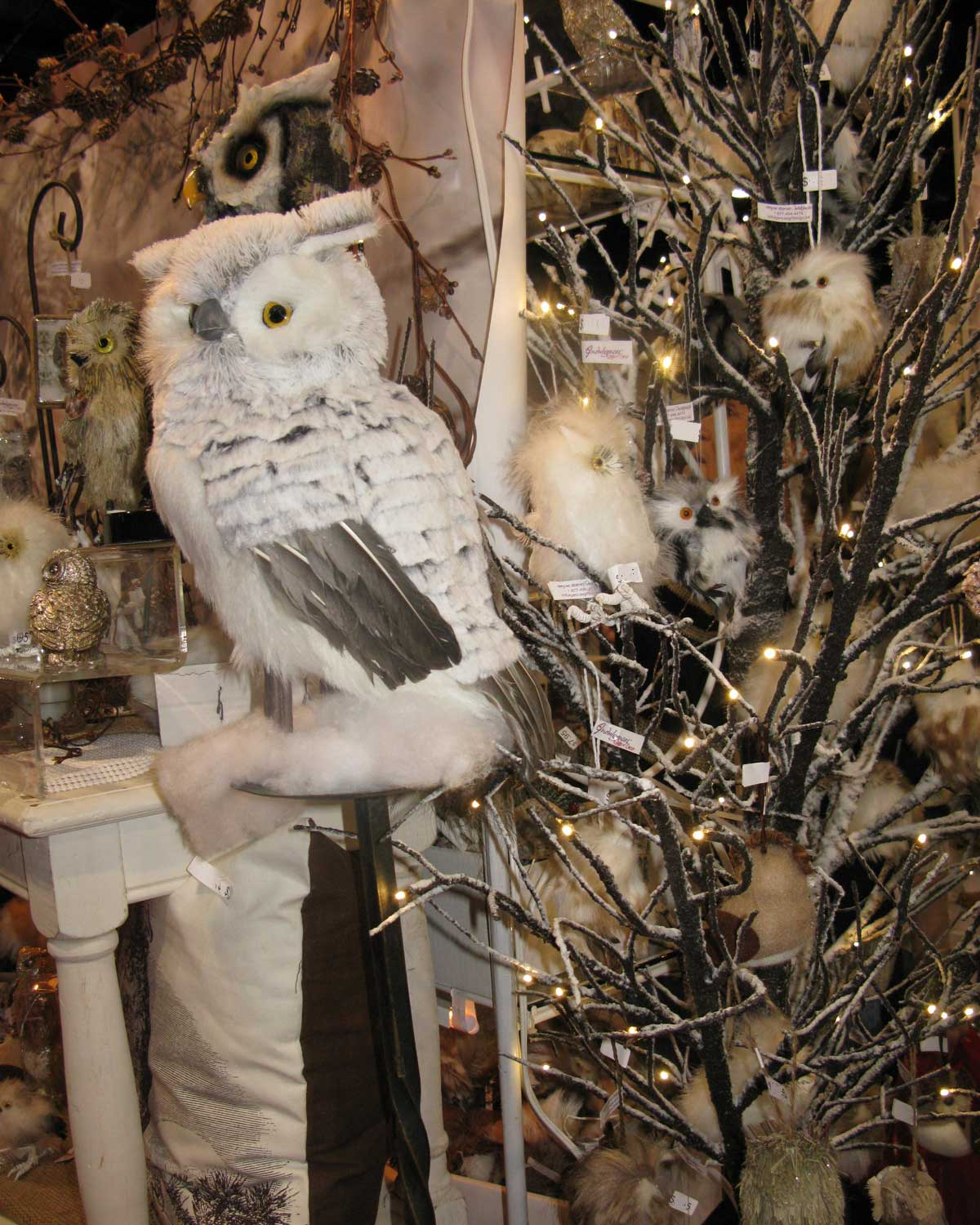 Indulgences Gifts And Decor: More Owls