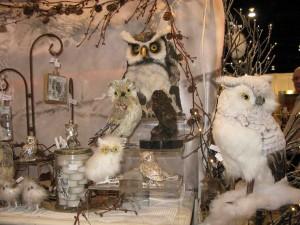 Indulgences Gifts And Decor: Owls