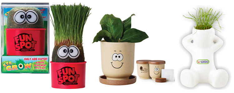 Corporate Promotional Tabletop Plants